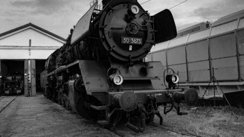 In treno al Carnevale di Bellinzona