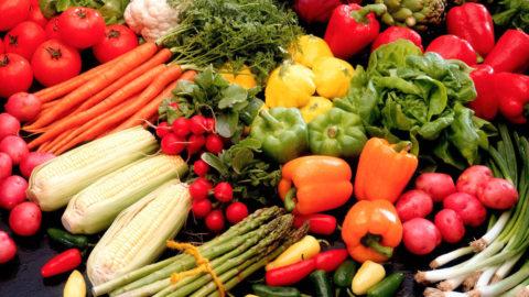 Conferenza sull'alimentazione per i bambini