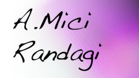 A-MICI RANDAGI