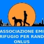 Canile Varese