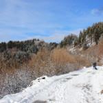 Neve Campo dei Fiori