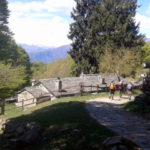 Monti di Pino