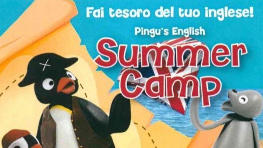 Pingu's English: Open Day Summer Camp